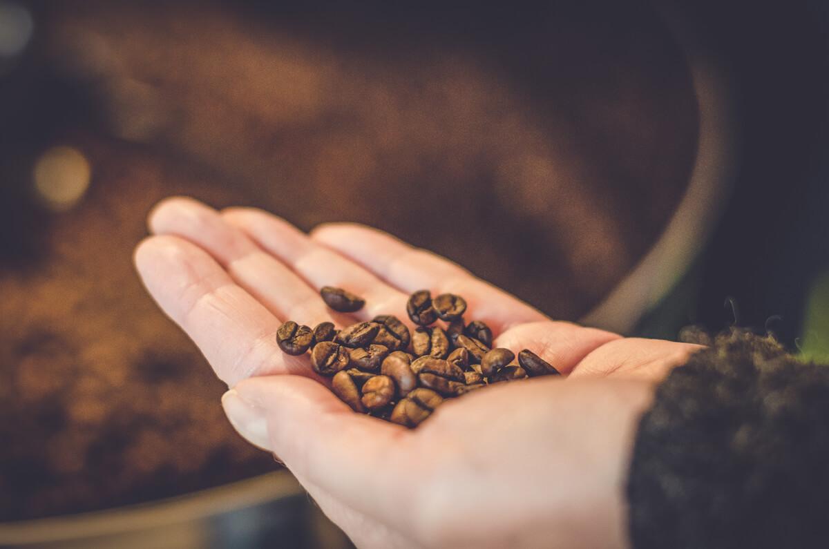 Hand mit Kaffeebohnen
